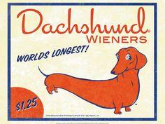 Dachshund Wieners by Brian Rubenacker  Art Print 61 x 46 cm Price: £13.99 vintage art animals dogs #vintage #art #animals #dogs