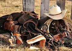 Rodeo, cowboy, horse, bull