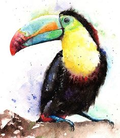 WATERCOLOR TOUCAN PAINTING original bird art by SignedSweet