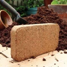 BULK Coconut Coir-2 bricks