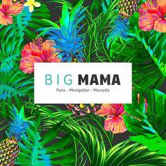 Agence Big Mama Marseille !