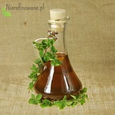 The herb commonly used as a culinary product to flavour meat dishes and pasta. Called common origanum or wild marjoram. It is a multi-annual crop, with bushy perennials. Oregano Oil, Pure Oils, Natural Medicine, Wine Decanter, Perennials, Barware, Herbs, Pure Products, Bar Accessories