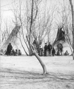 View of Native American Sioux families outside their tepees in their camp in a grove of box elders, near Fort Randall and the Missouri River, Dakota Territory - Bailey - 1882