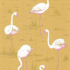 Flamingos children's Wallpaper by Cole and Son. Nubie stock a fabulous range of modern wallpaper designs for your children's bedroom or Nursery Waves Wallpaper, Kids Wallpaper, Print Wallpaper, Fabric Wallpaper, Pattern Wallpaper, Pink Flamingo Wallpaper, Pink Flamingos, Illustration Meaning, Cole And Son Wallpaper