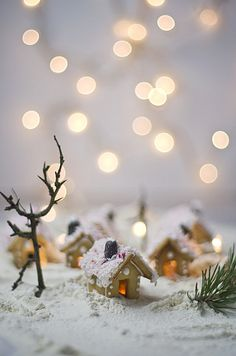 Gingerland by luluto, via Flickr