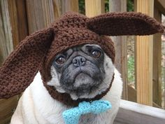 Dog Hat  Chocolate Ear Bunny Hat / Made To Order by Sweethoots, $20.00