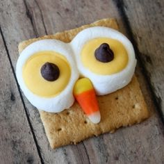Have a hoot with these easy to make treats!!