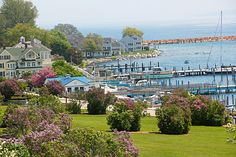 The Mackinac Island Lilac Festival promises a second chance at spring. While most Midwest lilac blooms are gone by late May, thousands of them are bursting with color in June on this nostalgic Michigan island.