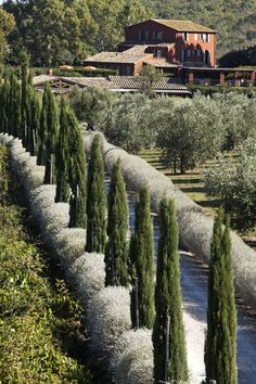 Locanda Rossa in Tuscany. A gorgeous farmhouse with restaurant and spa. Book a room or apartment.