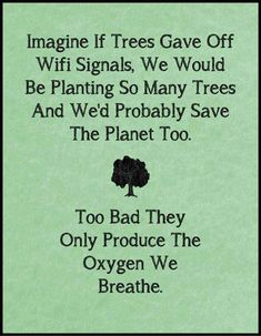 """Imagine if trees gave off Wifi signals, we would be planting so many trees... too bad they only produce the oxygen we breathe."""