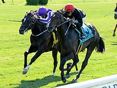 Mr Speaker (grandson of the great racing mare and broodmare Personal Ensign) winning the 2014 Belmont Derby