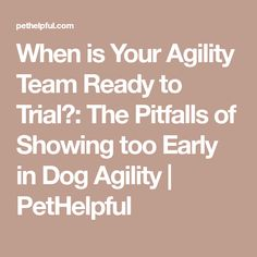 When is Your Agility Team Ready to Trial?: The Pitfalls of Showing too Early in Dog Agility | PetHelpful