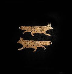 gold foxes