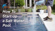 Salt Water Pool Maintenance Guide For Dummies Pool Maintenance Salt Water Pools And Water