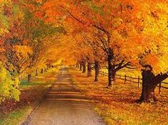 I love the Fall. I love Septembers. I love Octobers. I love the leaves changing colors...the smell of the season...cool nights...football games...pumpkin patches...making chili.
