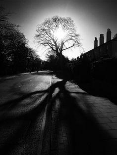 reach by Peter Hodgson, via Flickr