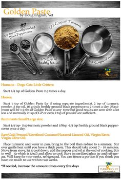 turmeric golden paste - Doug English - Turmeric Life