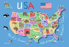 printable map of the USA - in color, bw and blank, with capitals etc ...