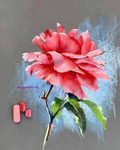Chalk Pastel Art, Soft Pastel Art, Pastel Artwork, Oil Pastel Paintings, Oil Pastel Drawings, Pastel Watercolor, Pastel Flowers, Chalk Pastels, Art Drawings
