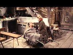 Heimatfilm - Ruf der Wälder (1965)