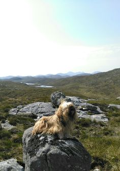 Up in the wild mountains of Scotland