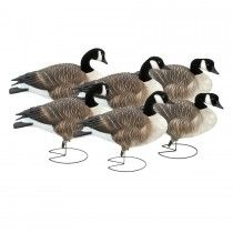 Canada Goose hats outlet shop - 1000+ images about Goose Decoys on Pinterest | Snow Goose, Full ...