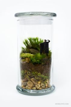 Harry Potter Inspired Terrarium // Miniature Snape