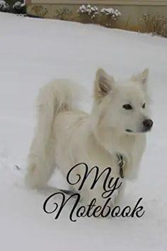 Amazon.com : awesome dog International Symbols, My Notebook, Best Dogs, Husky, Animals, Animales, Animaux, Animal Memes, Husky Dog