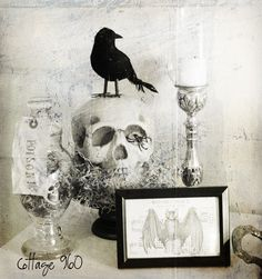 cottage 960 vintage finds, photography, an inspired life: Halloween Apothecary Shelf