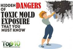 10 Hidden Dangers of Toxic Mold Exposure that You Must Know