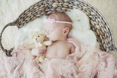 Newborn photography newborn baby teddy bear newborn girl photo