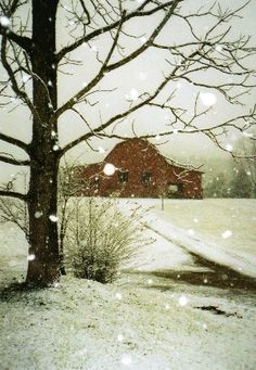 Barn in winter!