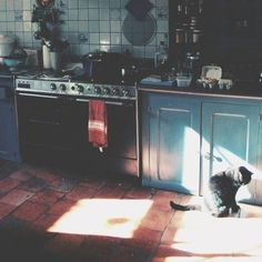 kitchen in the lazy afternoon light. Future House, My House, Apartment Therapy, Morning Light, Humble Abode, Light And Shadow, Interior And Exterior, Sweet Home, Vsco