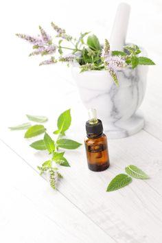 Peppermint - pesquisas realizadas na Alemanha comprovam o efeito analgésico desta poderosa  erva aromática.
