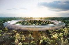 Circular work spaces break down barriers and foster creativity.  Of course Apple will be the one to do it.