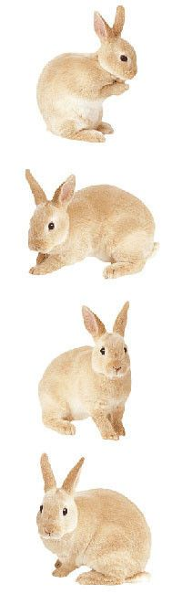 Mrs Grossman's Stickers - Bunny Rabbit by Mrs Grossman's Paper Co Proudly made in the USA Photo-realistic Rabbit stickers are fun to use on sticker art pictures and paper crafts and they are perfect t