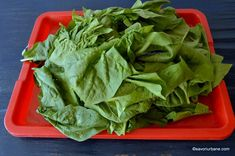 Stevia, Lettuce, Spinach, Vegetables, Recipes, Food, Canning, Recipies, Essen