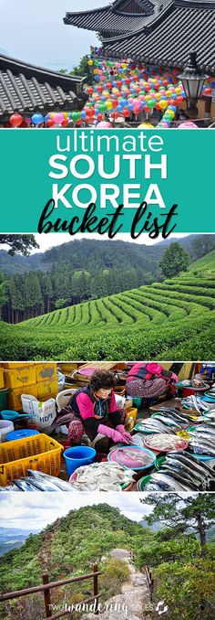 Ultimate South Korea Bucket List: After living in Korea for a year, we made this list of events, festivals and things to do while visiting or teaching in South Korea. #southkorea #Korea #bucketlist