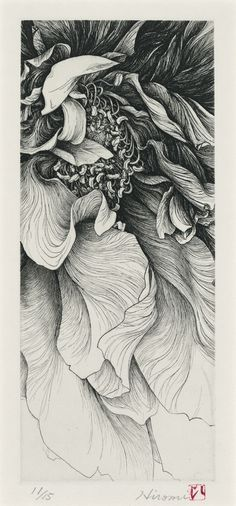 A Flower, by Hiromi Miura, 2005.  Etching. 26x11cm
