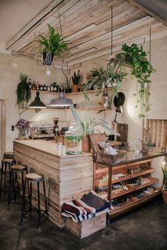 beautiful and warm coffee shop interior with plants