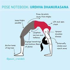 A full breakdown for the mother of all backbends: Urdhva Dhanurasana