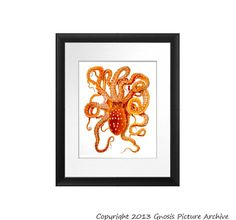Kids Wall Print Wall Art Red Orange Octopus Print No.6 Sea Life Ocean Animals Art Dorm Beach Coastal Nautical Bedroom Home Decor 8x10