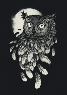 Owl in black & white - could be a beautiful tattoo, espescially in color