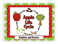 Apple Life Cycle Booklets and Posters from Teacher Features on TeachersNotebook.com -  (15 pages)  - Coordinates perfectly with your Kindergarten Apple unit! (15 pages) Five Apple Life Cycle Posters and two interactive booklets are included!