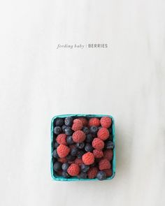 Feeding Baby Berries - lots of unique homemade baby food recipes and ideas