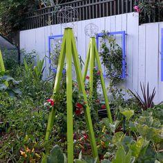 TerraSculpture has updated the traditional trellis for the modern garden