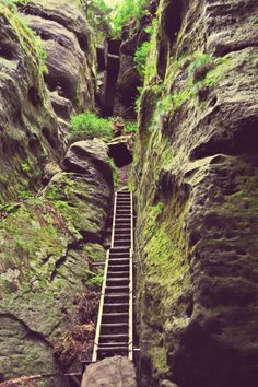 Saxon Switzerland National Park / Germany