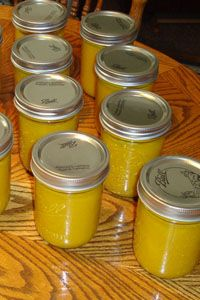 Hot Pepper Mustard- Easy canning and delicious on hamburgers, hot dogs, pretzels.