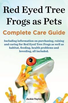 Red Eyed Tree Frogs as Pets, Complete Care Guide including information on purchasing, raising and caring for Red Eyed Tree Frogs as well as habitat, feeding, health problems and breeding, all included.