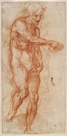 Andrea del Sarto (Andrea d' Agnolo), 1486-1530, Italian, Study for St John the Baptist, c.1517. Red chalk, 38.5 x 18.8 cm. National Gallery of Victoria, Melbourne. High Renaissance.